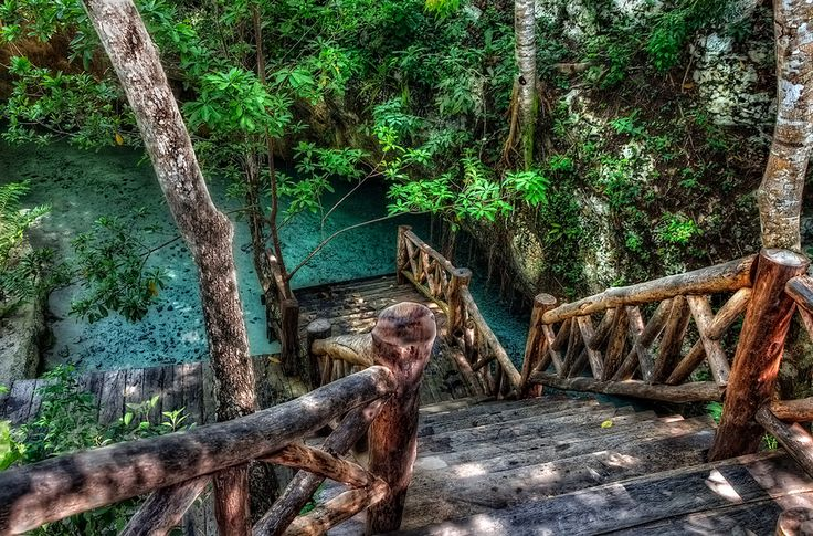 The delicious Gran Cenote in Tulum, Mexico Caribe