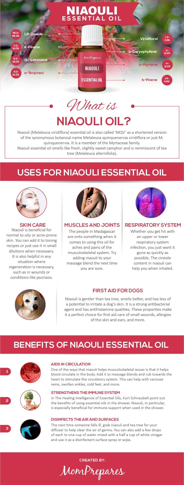 Niaouli Essential Oil has some amazing uses and health benefits. This guide takes an unbiased research-backed approach to provide only the facts. via @momprepares