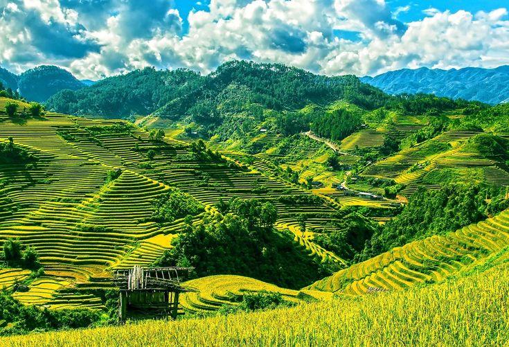 Vietnam #Asia #Asien #Vietnam #Nature #Natur #Travel #Resa #Resmål #Beautiful