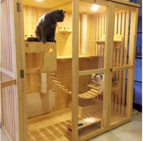Hasil Gambar Untuk Kandang Kucing Kamar Kucing Kandang Kucing Rumah Kucing
