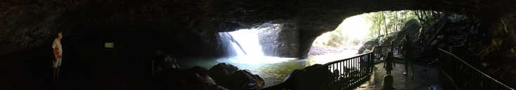 Natural Bridge waterfall - Springbrook