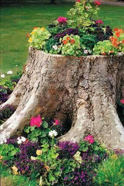 Love this idea!! Drill holes in the wood and add flower seeds! !