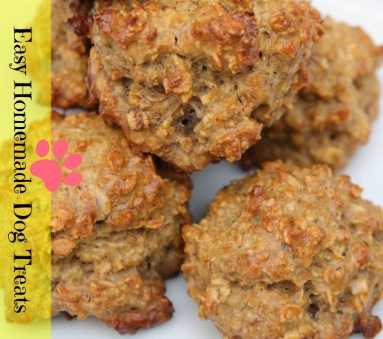Soooo Good for the Pups!! Homemade Dog Treats – Peanut Butter Oatmeal