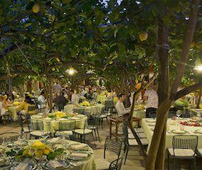 http://roxelle-club.com/fr/magazine/article/a-l-ombre-des-citronniers