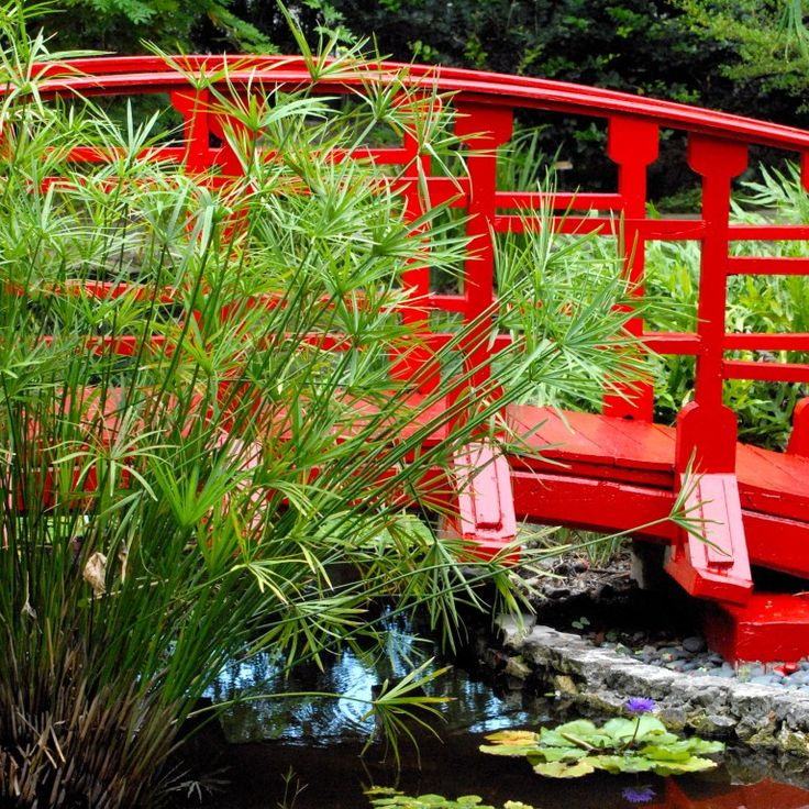 Japanese Garden Bridge | Japanese Garden Bridge