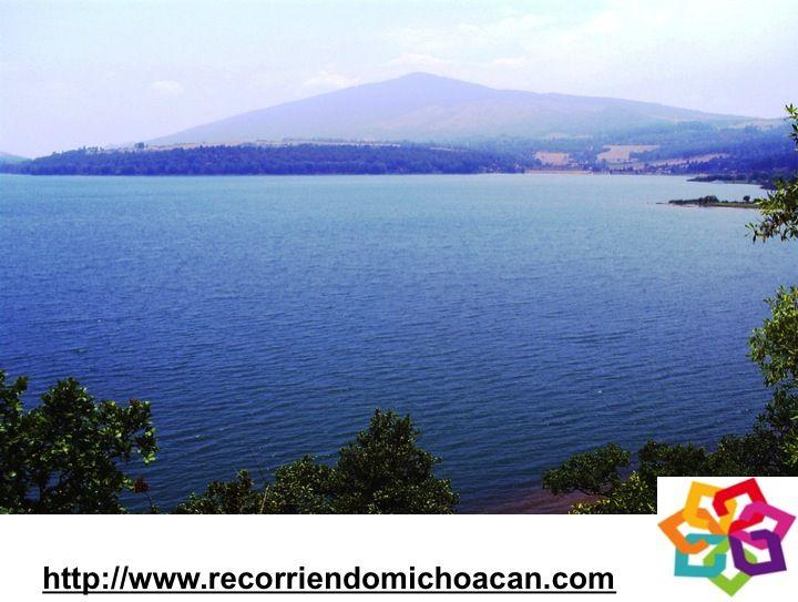 MICHOACÁN te dice que Cuitzeo es la laguna más extensa de México, es de gran importancia ya que ayuda a regular el clima de la región, aquí encontraras garzas, gaviotas y diversos reptiles, y el pato canadiense por nombrar algunos,  la profundidad media del lago es de 2m. y su  cuenca es de 3977 km2. HOTEL DELFIN PLAYA AZUL http://www.hoteldelfinplayaazul.com/portal/