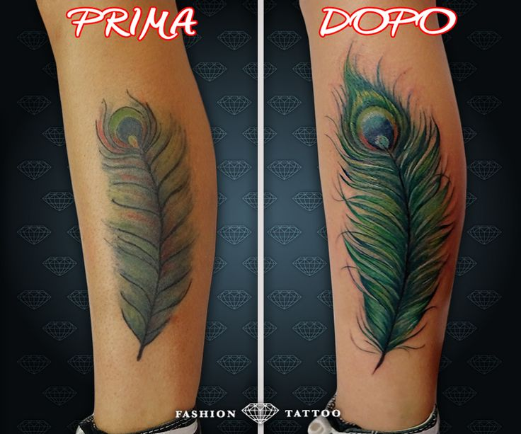 restyling piuma pavone tatuaggio