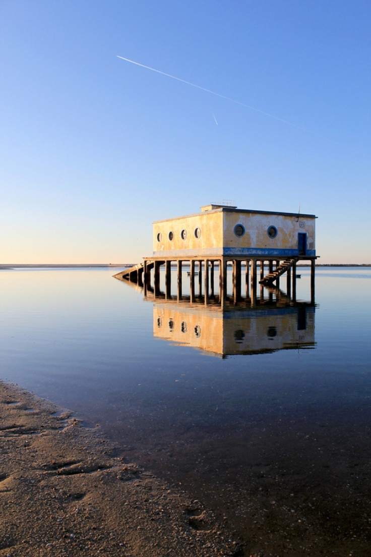 Ria Formosa Natural Park Ria Formosa, Portugal to learn more about Portugal visit the Enjoy Portugal website: www.enjoyportugal.eu #portugal #birdwatching