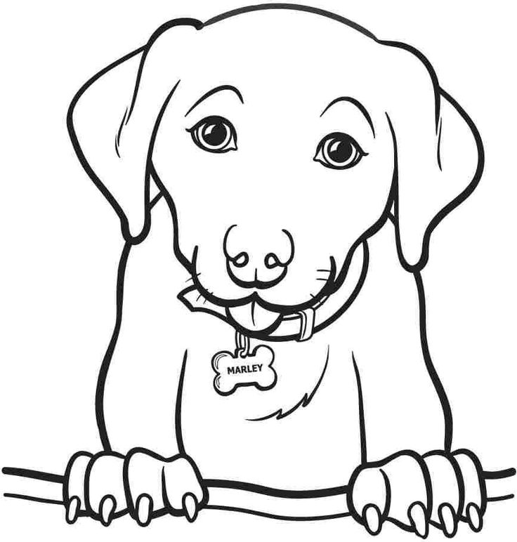 printable animal dogs coloring sheets for kids amp girls 8611
