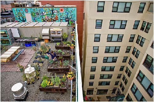Huertos en terrazas o azoteas huertos urbanos for Terrazas urban mall chacras de coria
