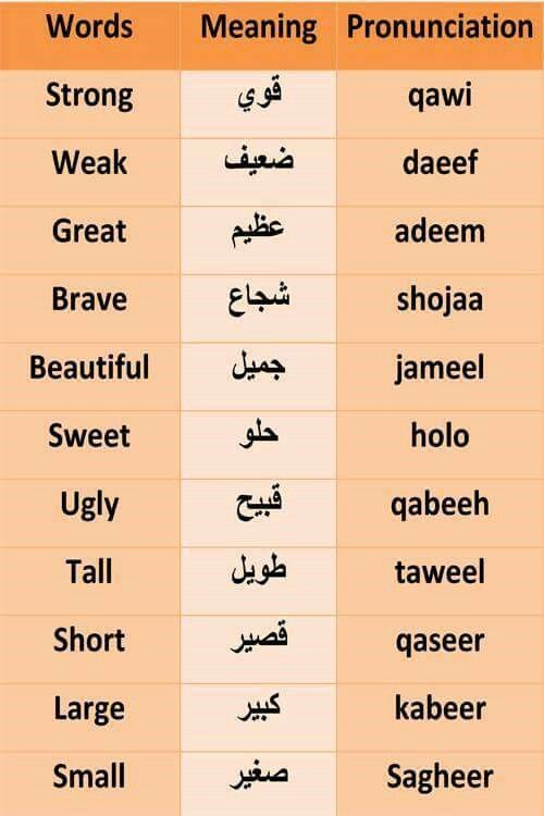 arabic language is important in learning Learn arabic, a language that continues to be an increasingly important world  language and is the official language of 22 countries spanning from the.