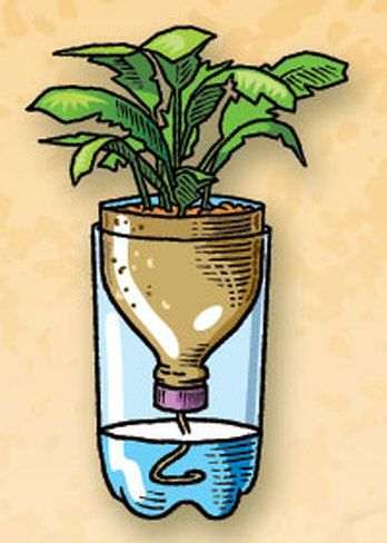 Simple Recycled Bottle Container Garden.  Click the image for more information.