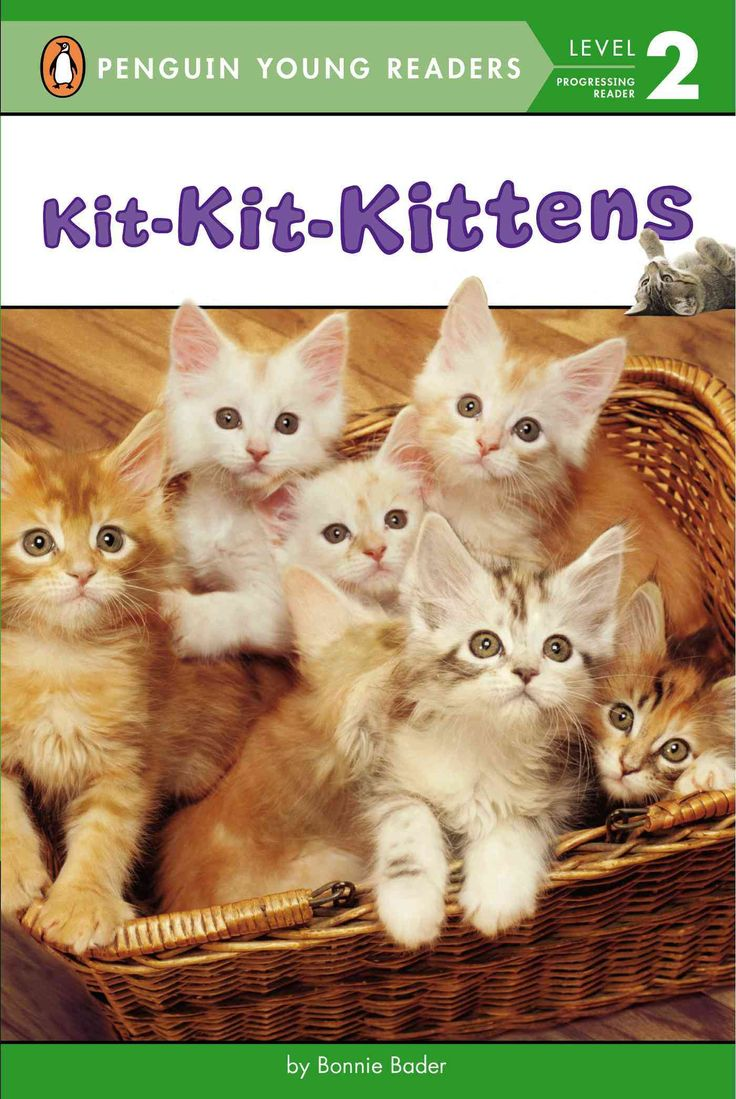 Calling all cat lovers learning to read! Learn all about kittens in this fact-and-photo-filled book that captures all the charm of these adorable animals! This new nonfiction reader will teach kids ab