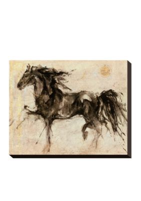 Art.com Assorted Lepa Zena Stretched Canvas Print - Online Only