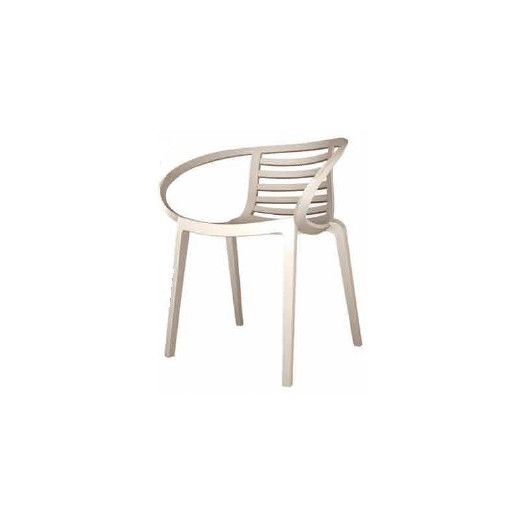 Papatya Mambo Arm Chair | AllModern