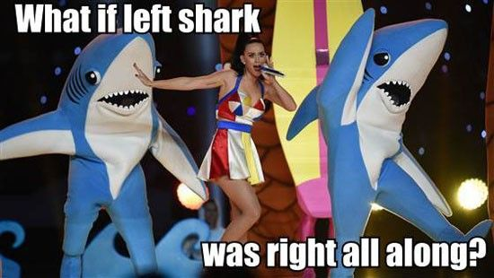 Super Bowl XLIX Memes Left Shark http://www.futebolamericano.eu/nfl/os-memes-do-super-bowl-xlix
