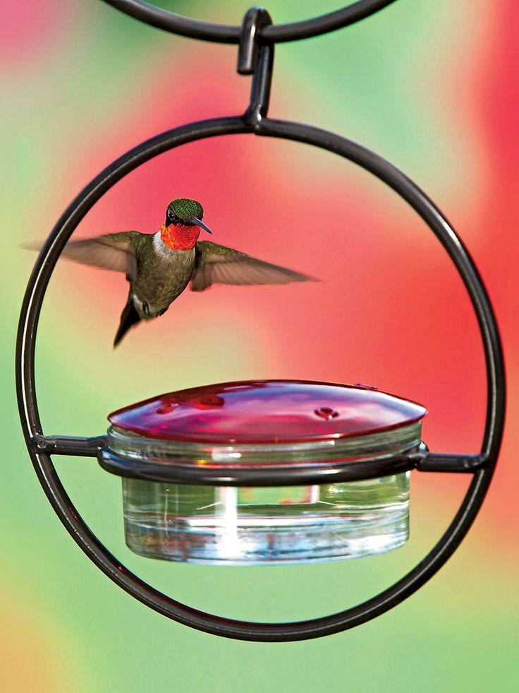 Glass Hummingbird Feeder - Hummingbird Feeders