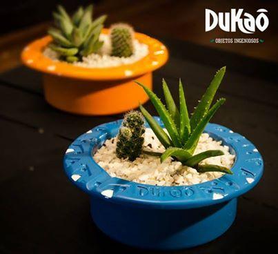 Bandeja para cactus