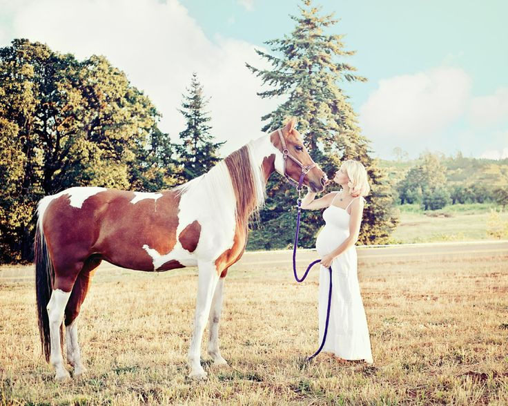 Photoshop Actions Pse Maternity Horse Maternity