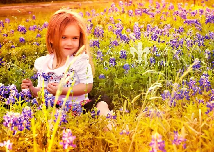bluebonnet pictureBluebonnets Pictures