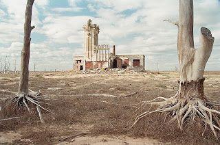 CAMINANDO LA PAMPA: octubre 2011. el Matadero tras los árboles descalzos.Epecuén, Argentina.