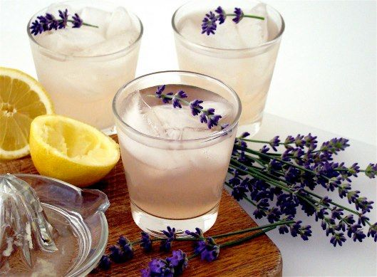 Lavender Lemonade: Ingredients 1 cup fresh lemon juice  1 1/2 cups Lavender Syrup (can be purchased at NEOB Lavender) 6 cups water  Mix in a pitcher over ice and garnish with a spring of lavender.