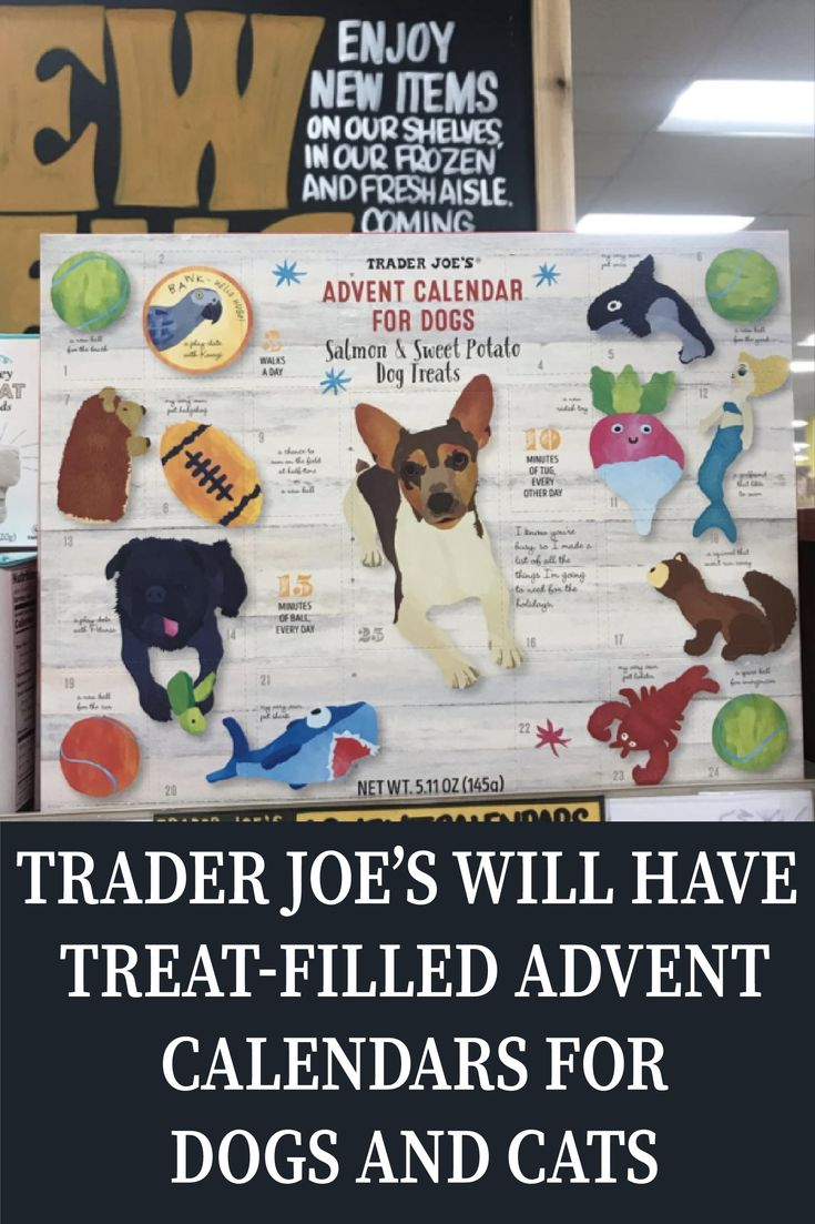 Trader Joe's Will Have TreatFilled Advent Calendars For