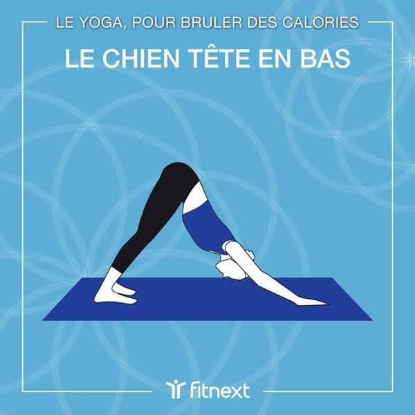 Pour brûler les calories #yoga | Yoga, Muscler cuisses