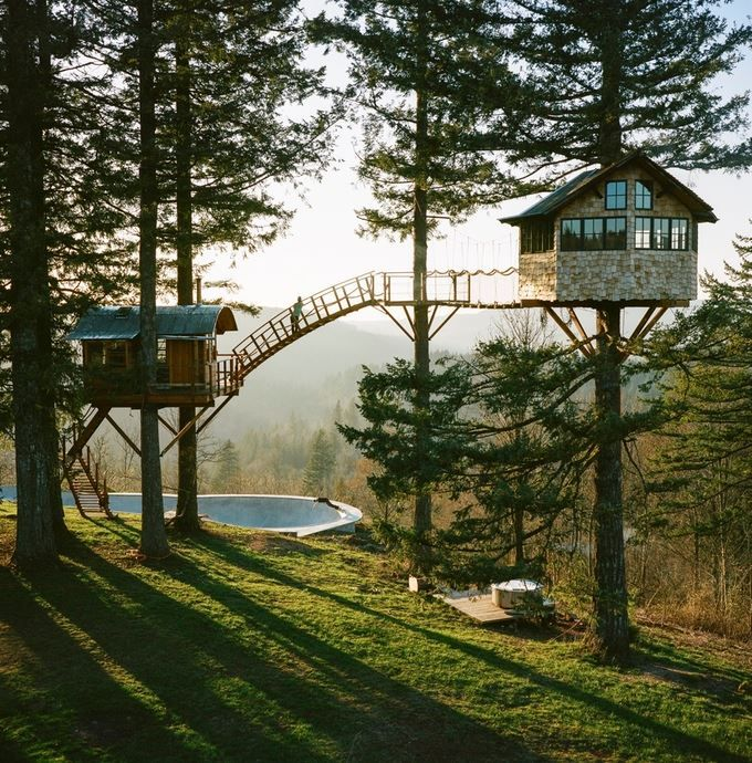 Treehouses with bridge between
