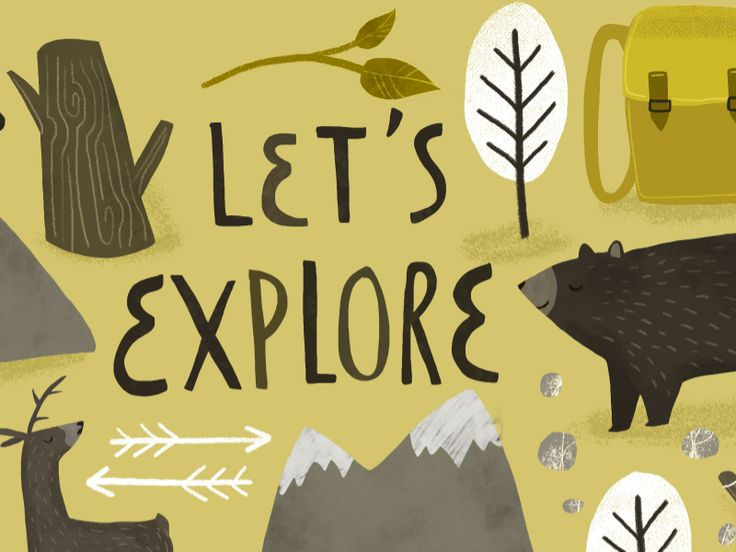 Let's explore by Studio Brun - wildlife, woodlands, into the woods, bear, deer, wild, animals, illustration, illustrated, forest