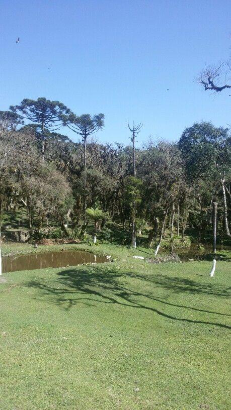 Serra da Graciosa em Quatro Barras, PR