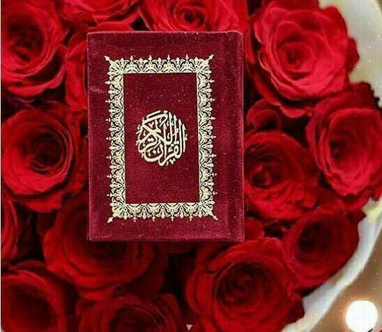 Pin By Dhuha Dhuha On Qur An Quran Quran Recitation Quran Quotes