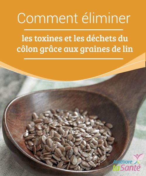 Eliminer les déchets du côlon avec les graines de lin