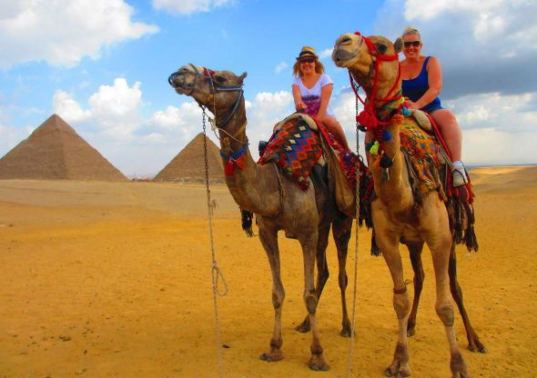 Is riding a camel on your bucket list?! Travel to Egypt and check this one off...