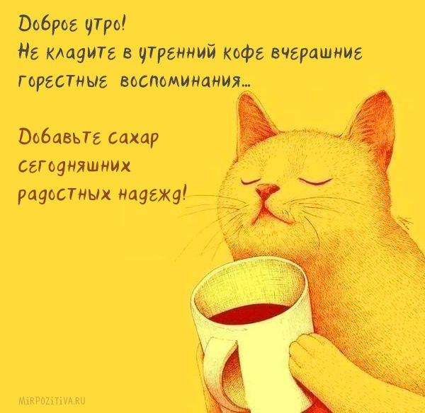 Доброе утро! Не кладите в утренний кофе вчерашние горестные воспоминания… Добавьте сахар сегодняшних, радостных надежд!