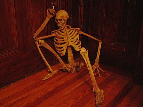 299 best halloween skeletons images on pinterest halloween skeletons halloween stuff and halloween ideas - Halloween Skeletons