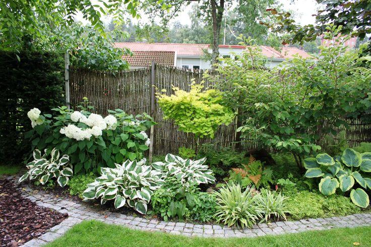 Utveckling och restaurering av vår gamla trädgård i Tyresö. Funderingar, bilder, referenser, tips och berättelser.
