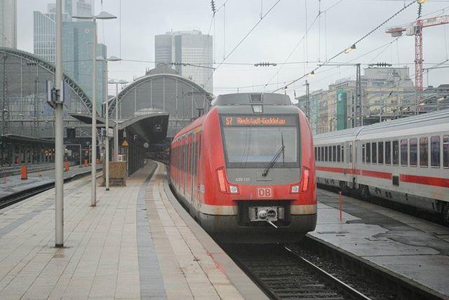 430 131 der S-Bahn Rhein-Main erreicht bei strömendem Regen Frankfurt am Main Hauptbahnhof und wird kurz darauf wieder als S7 nach Riedstadt-Goddelau aufbrechen.  Leider fahren die 430 nicht, wie eigentlich vorgesehen, bei der S-Bahn Rhein-Ruhr. :( #db #deutschebahn #frankfurt #sbahn #eisenbahnfotografie  #eisenbahnherz #eisenbahnfieber #eisenbahnbilder #train_nerds #train_explorer #railways_of_our_world  #railways_de  #railways_of_germany #best_of_trainspotting #sbahnonly #railwayculture