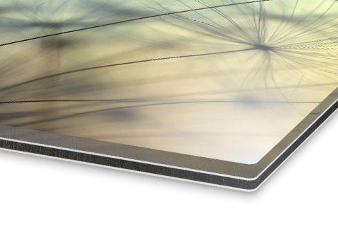 Acrylglas Aluminium Platte. http://www.meinfoto.de/wand-deko/foto-hinter-acrylglas.jsf #meinfoto #wanddeko #acrylglas  #fotoaufacrylglas