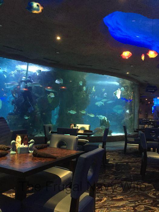 I LOVE THIS RESTAURANT <3 Aquarium Restaurant Nashville, Tennessee – An Underwater Dining Experience