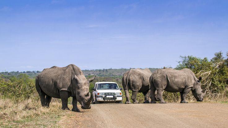 Dél-Afrika utazás - OTP Travel Utazási iroda