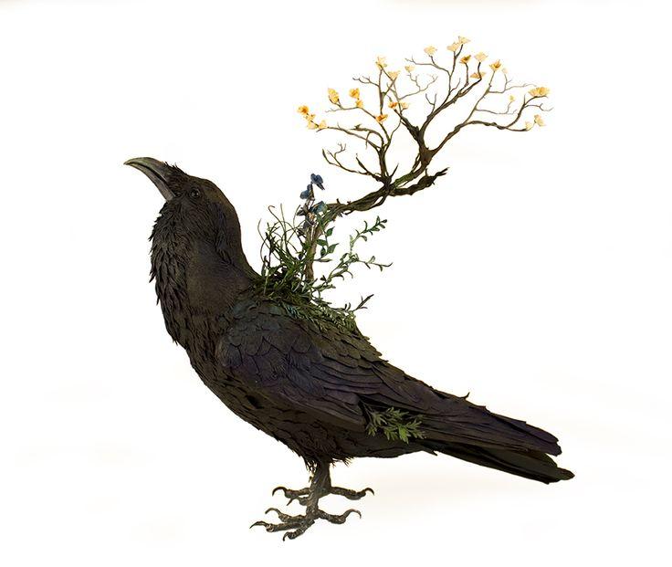 Best Ellen Jewett Sculpture Images On Pinterest Extinct - Surreal animal plant sculptures ellen jewett