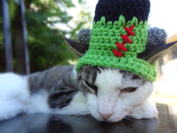 Halloween Cat Dog Costume - The Frankenstein Hat for Cats and Small Dogs - Halloween Cat Hat Dog Hat