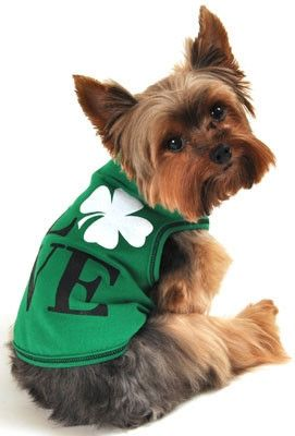 Your best friend will have the luck of the Irish all year round in this cute graphic tank! Super soft and comfortable cotton with a hint of lycra. Machine washa