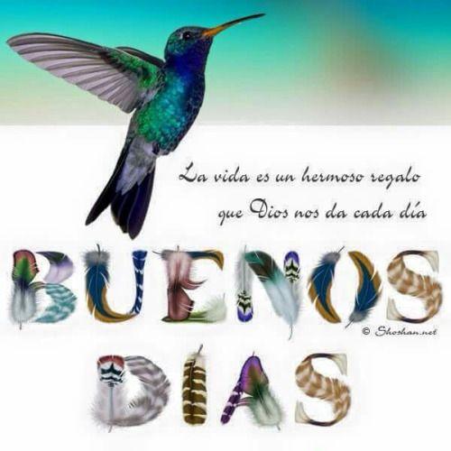 Buenos Dias  http://enviarpostales.net/imagenes/buenos-dias-804/ Saludos de Buenos Días Mensaje Positivo Buenos Días Para Ti Buenos Dias