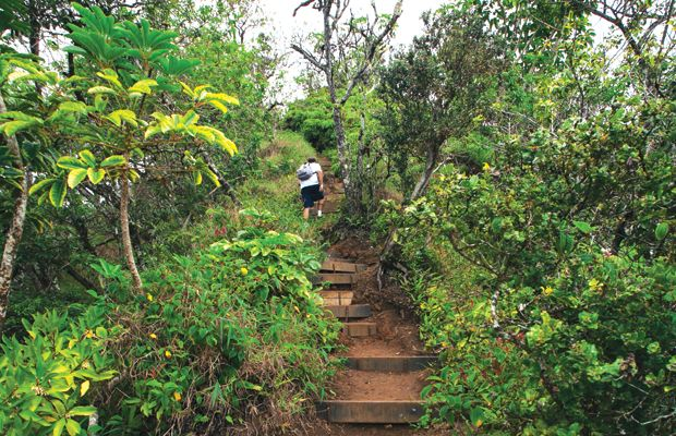 20 Great Oahu Hikes - Honolulu Magazine - September 2013 - Hawaii