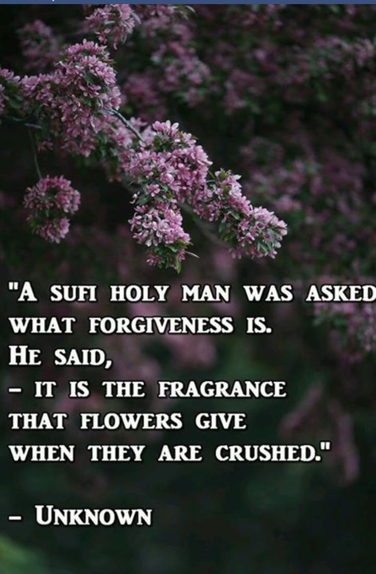 23 best images about Forgiveness on Pinterest | Remember ...