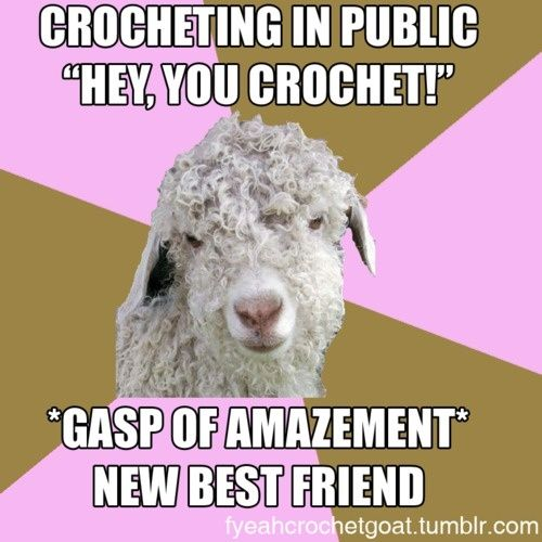 Knitting Crochet Jokes : Best yarn quotes pictures and funnieness images on