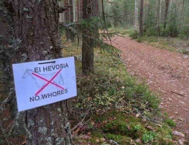 No whores