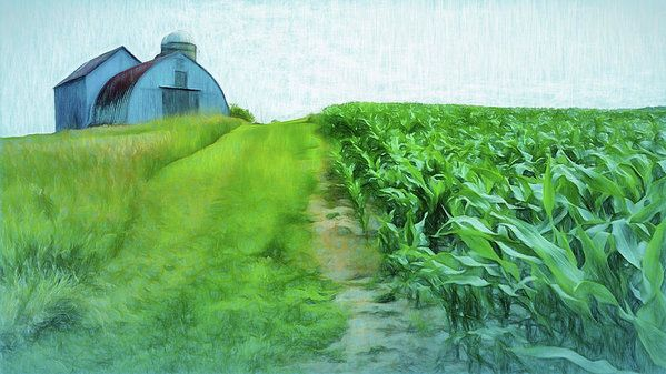 Farming Corn Art Print by Leslie Montgomery.
